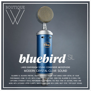 BLUE MICROPHONE - BLUEBIRD SL [Blue Microphones 공식판매점]